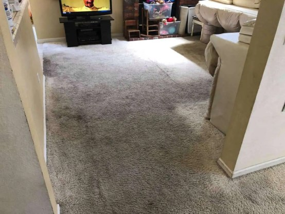 Carpet Cleaning Roseville CA Before