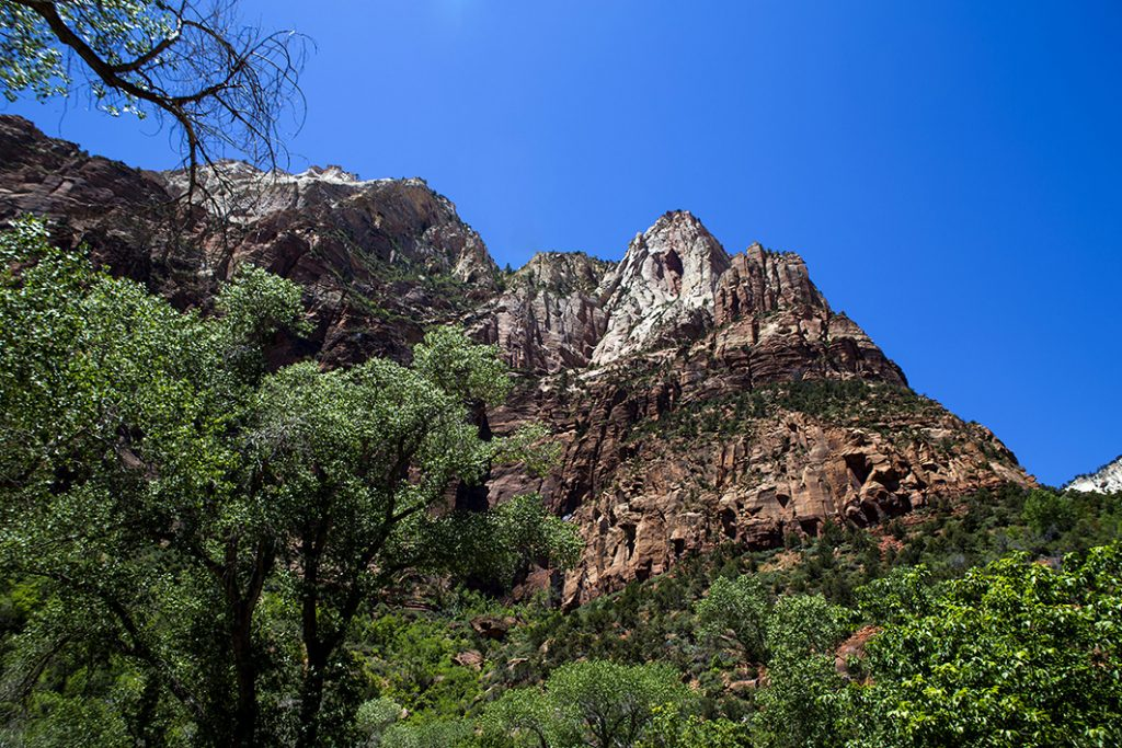 Bergtop in Zion