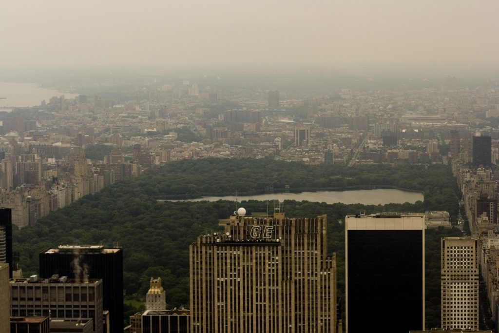 Central Park seen from the Empire State Building