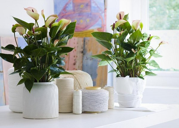 Luxury Ceramic Pots Design