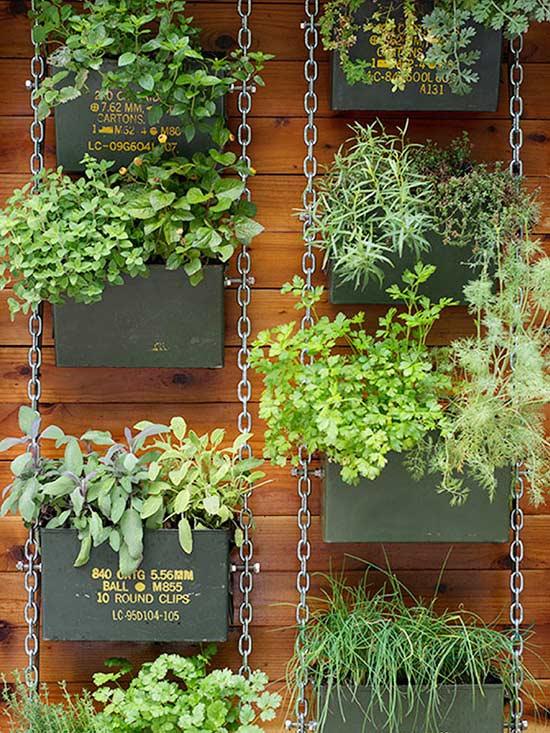 pot plant wall