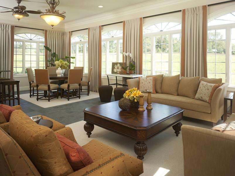 elegant color sofa ideas