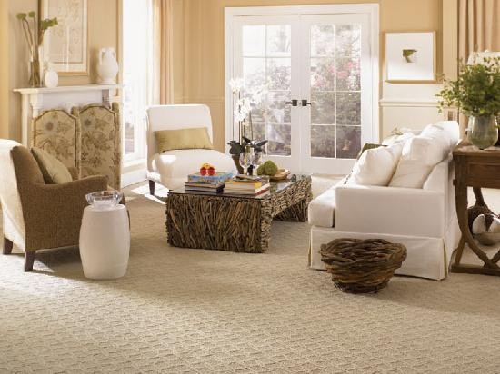 wide and large floor carpet for living room