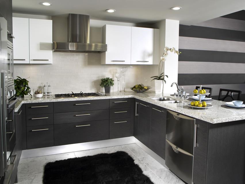 luxury kitchen cabin design ideas