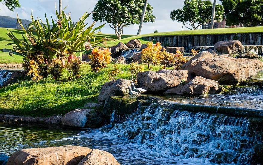 waterfall garden nature tropical water pond green landscape stone