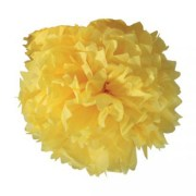 Boule crépon – jaune