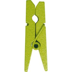 Pince bois vert