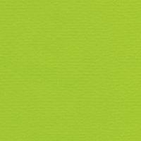 Papicolor original vert clair