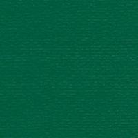 Papicolor original vert foncé