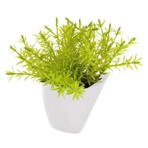 Mini plante synthétique thym
