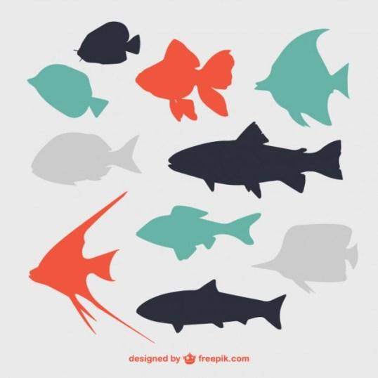 10 Flat Fish Silhouettes