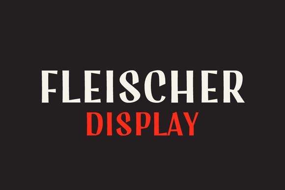 fleischer-display