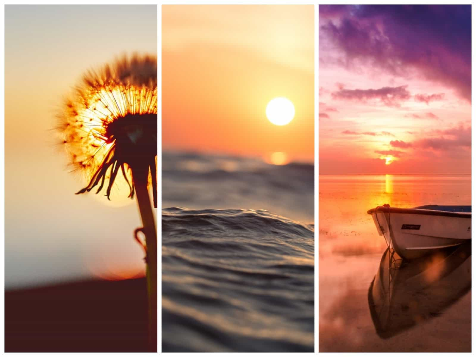 130 Amazing Sunset Quotes That Prove How Beautiful The World Is