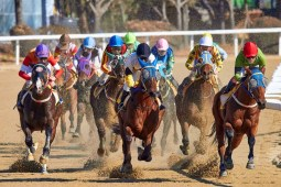 Race Horses Competing During Noon