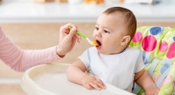 Benefits of Organic Baby Food