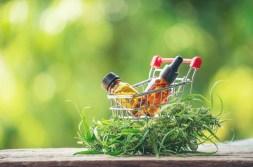 4 Ways to Buy CBD Online Safely