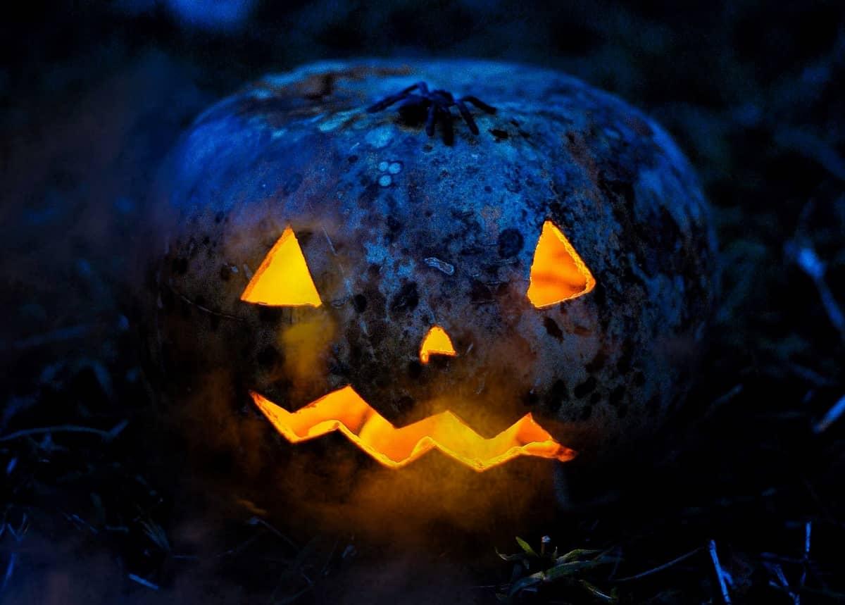 60+ Hilarious Halloween Memes – Inspirationfeed