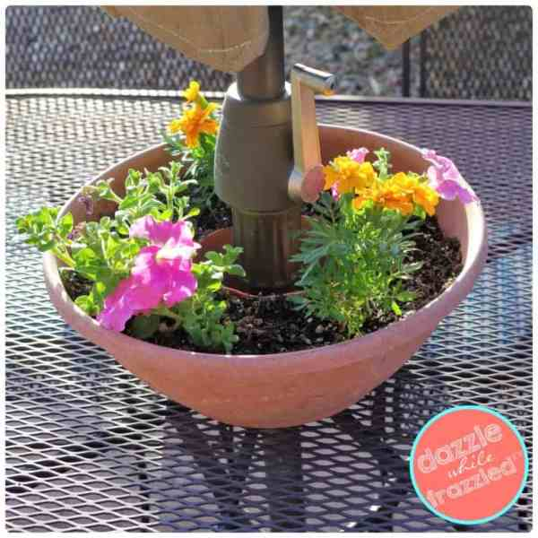 Easy umbrella flower garden