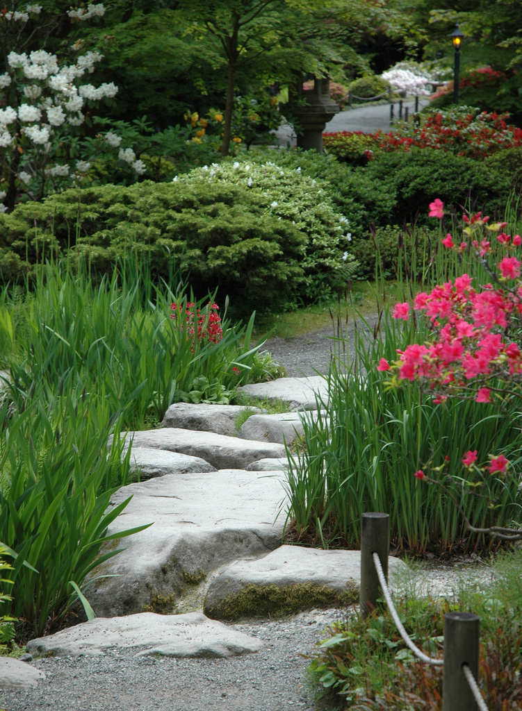 Garden Stepping Stone Design and Ideas - InspirationSeek.com on Stepping Stone Patio Ideas  id=52056