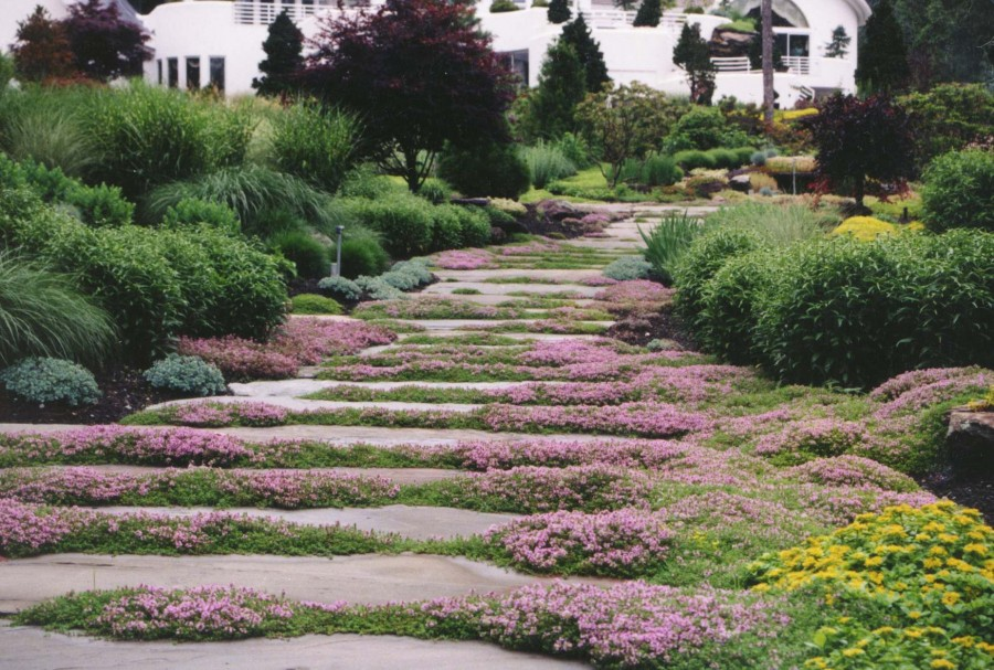 Garden Stepping Stone Design and Ideas - InspirationSeek.com on Stepping Stone Patio Ideas  id=81150