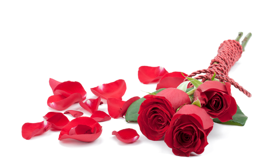 Valentines Day Roses Ideas For Your Love