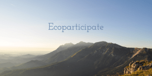 ecoparticipation