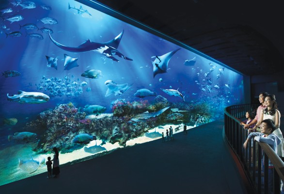 Ocean Gallery, Resorts World Sentosa