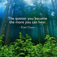 The quieter you become..