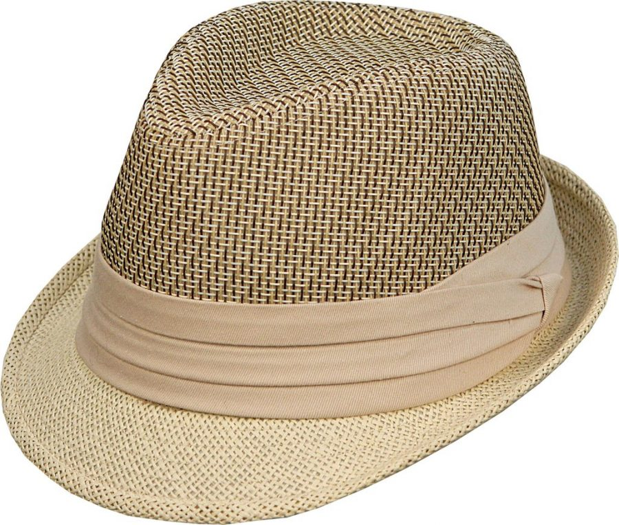 96426bad Men's Fedora Style Beige Straw Hat with Band - Inspired Enterprise
