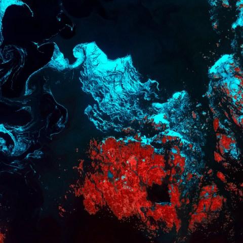 Планета як мистецтво