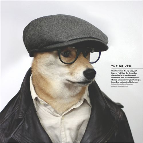 Menswear Dog_02