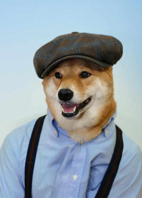 Menswear Dog_15