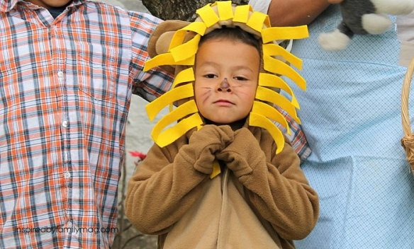 easy Wizard of Oz lion costume
