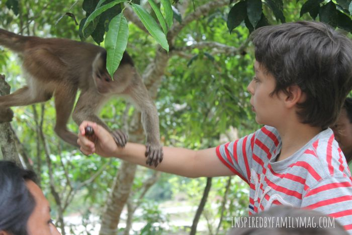 jungle with kids 3