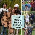 last minute family costume ideas