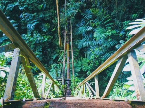 Maunawili Trail, Oahu, Hawaii