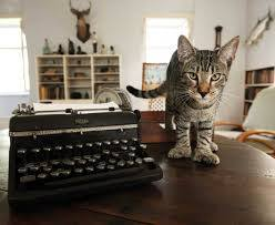 Six-toed cat beside Hemingway's typewriter. credit: www.hemingwayhome.com/cats/