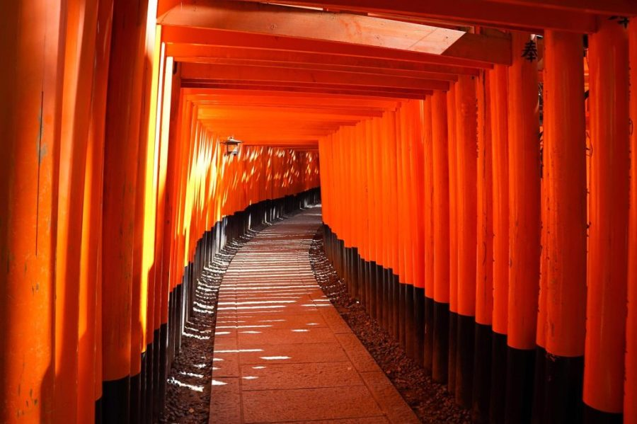 Kyoto Fox Shrine - fushimi inari tori gates