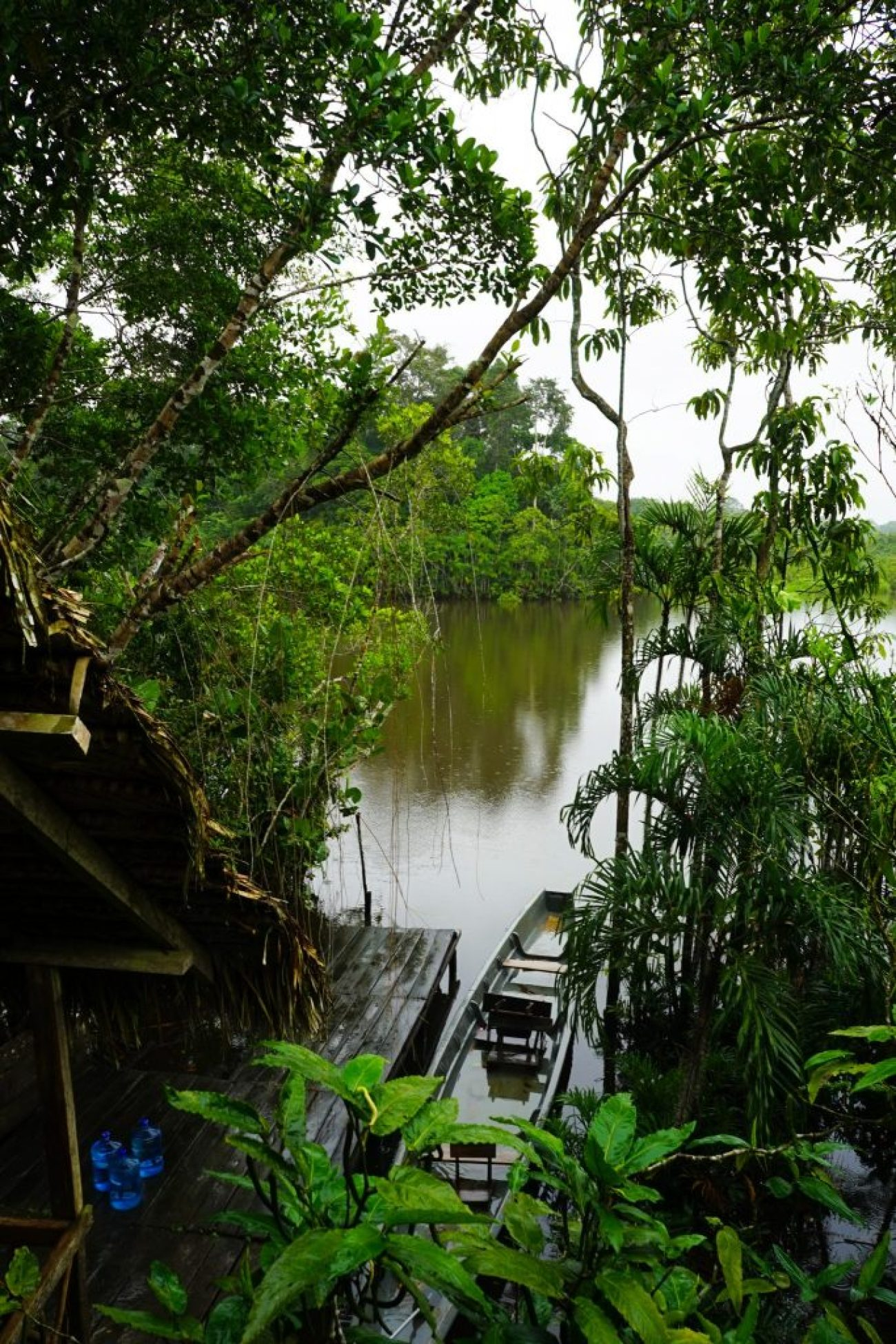 Sani Lodge Ecuador: A Amazon rainforest lodge in the Yasuni National Park