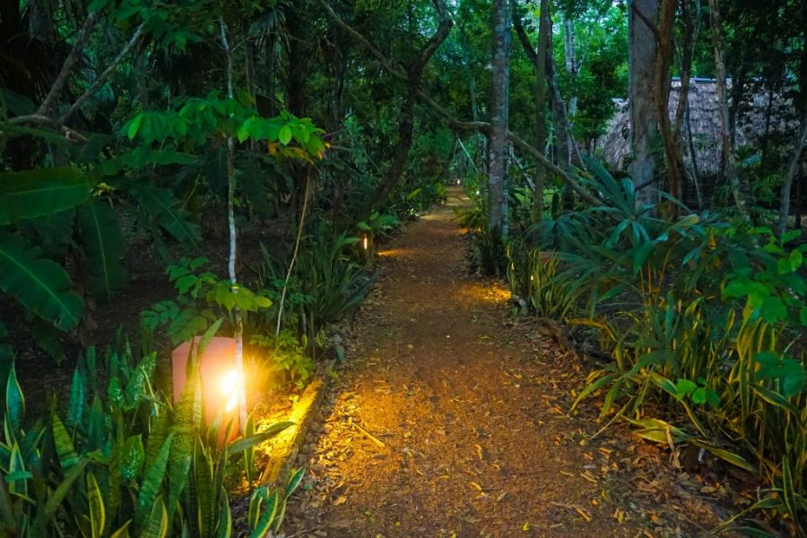 Tikal Inn Hotel - Tikal jungle lodge