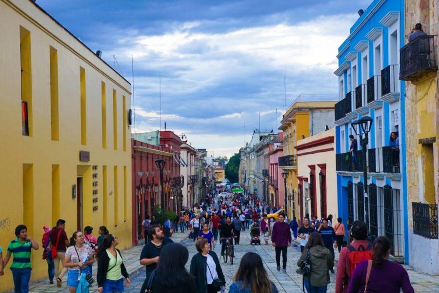 what to do oaxaca city