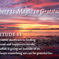 Magic of Gratitude!