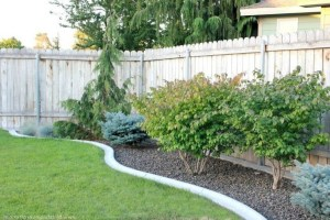 63+ Best Small Backyard Landscaping Ideas 20