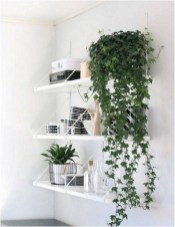 15+ Amazing Nature Decoration In Your Home With Beautiful Indoor Plants Idea 03