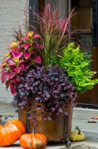 88+ Amazing Fall Container Gardening Ideas (24)