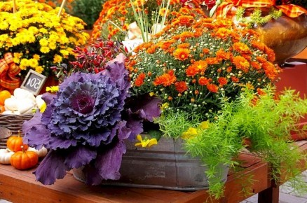 88+ Amazing Fall Container Gardening Ideas (29)