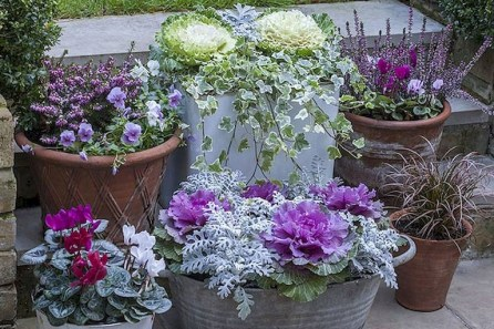 88+ Amazing Fall Container Gardening Ideas (51)