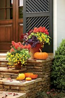 88+ Amazing Fall Container Gardening Ideas (76)