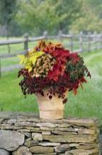 88+ Amazing Fall Container Gardening Ideas (81)