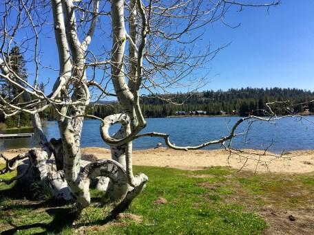 Beach At Serene Lakes
